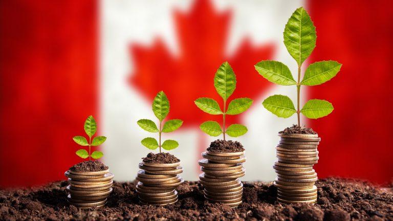 加拿大政府新计划:通过在2021年-2013年吸引更多移民来恢复经济